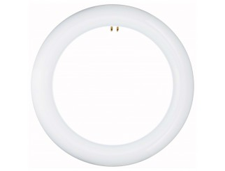 Lampada Neon Circolare 15W Luce Naturale Basso Consumo Risparmio Energetico