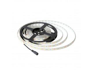 Striscia 300 Led Impermeabile 5050 SMD IP65 5 Metri Luce Bianca Calda LIFE